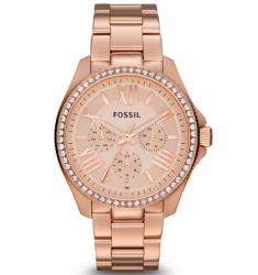 Fossil AM4483 Cecil
